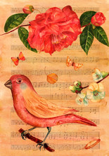 Vintage Collage With Watercolor Bird, Camellia, Butterflies