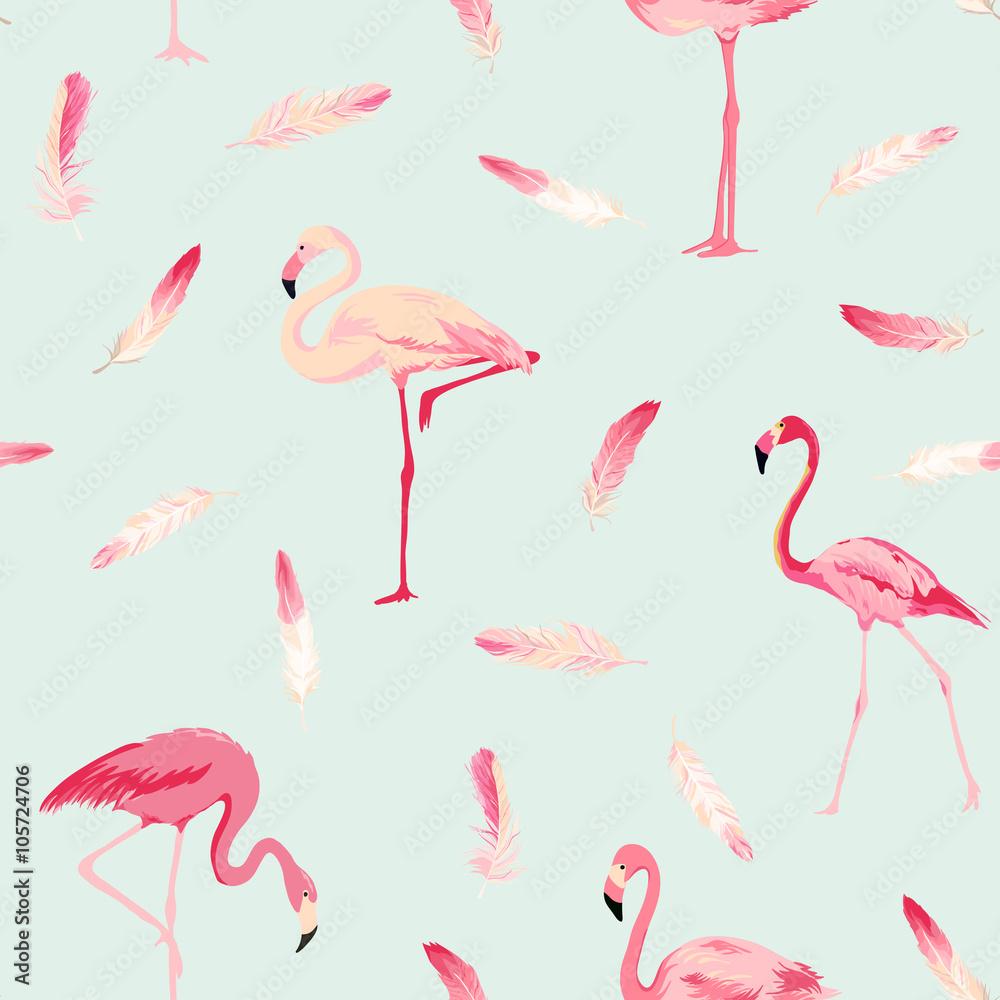 Foto  Flamingo Vogel Hintergrund
