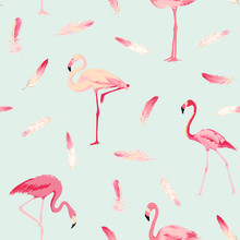 Flamingo Bird Background. Flam...