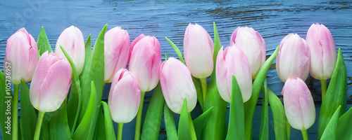 Obraz Pink Tulips - fototapety do salonu