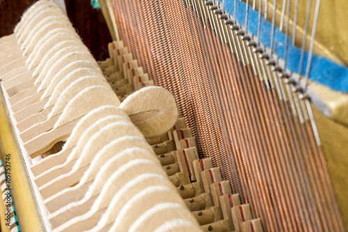Fotografie, Tablou  Pattern of hammers and strings inside piano, close up