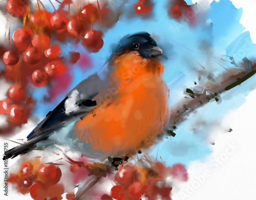 Painting. Bullfinch on a mountain ash - 105766755