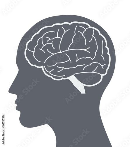 Fotografiet  Vector brain silhouette illustration with woman face profile.