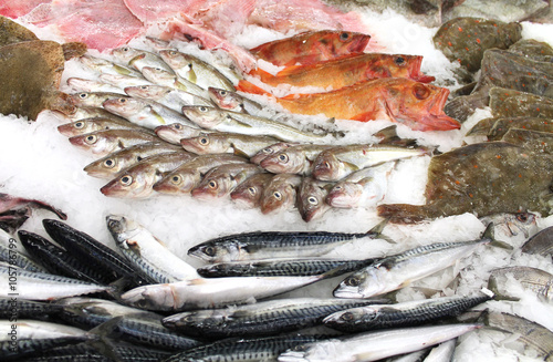 Valokuva  étalage de poissons