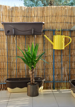 Yellow Metal Watering Can (pot...