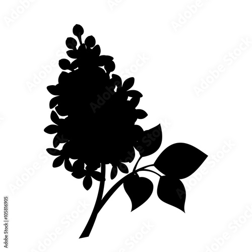 Vector black silhouette of branch of lilac flowers isolated on a white background Wallpaper Mural