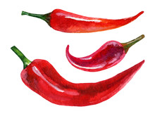 Watercolor Set Of Red Chili Pepper, Hand Painted Illustration