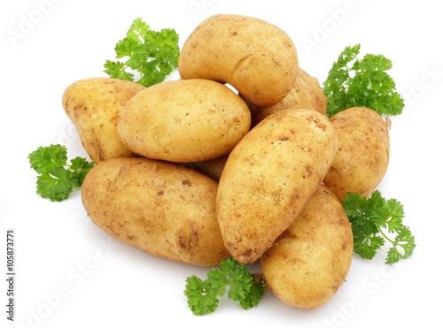 Obraz ziemniak - fototapety do salonu
