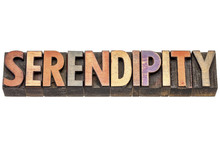 Serendipity Word In Wood Type