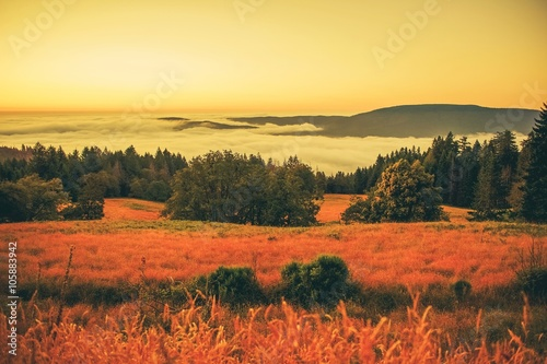 Poster de jardin Brique Foggy Landscape at Sunset