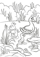 Coloring Pages. Kind Duck And ...