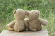 Teddy bear sitting , .blurred background.