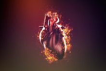 Abstract Human Heart In Flame And Smoke