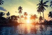 Golden Sunset On The Sea Coast...