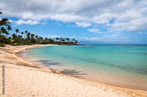 Fotografie, Tablou Napili beach