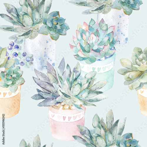 Cotton fabric Floral seamless pattern.Succulents in pots.
