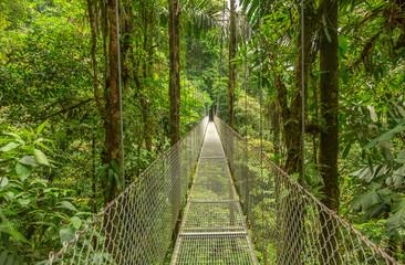 FototapetaHanging bridge in Costa Rica