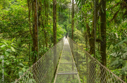 Photo Hanging bridge in Costa Rica