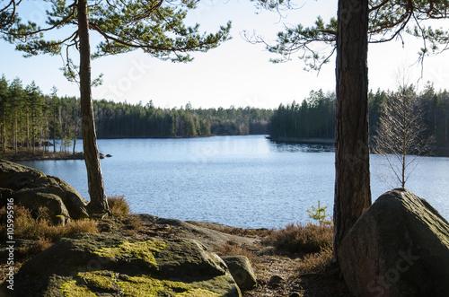 Cuadros en Lienzo Rocks and tree trunks by lakeside