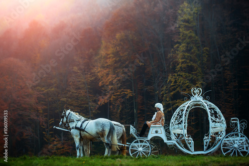 Vintage carriage in forest Fotobehang
