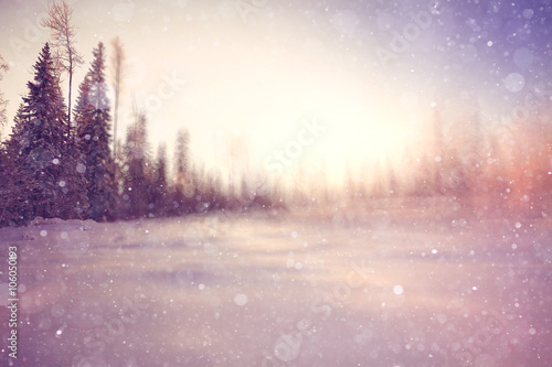 Poster Blanc winter background blur forest snowflakes bokeh