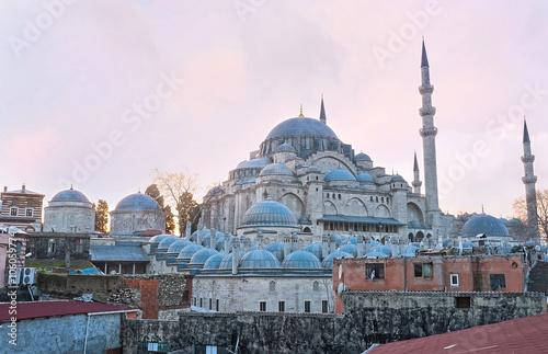 Spoed Fotobehang Delhi The great mosque