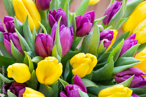 Purple and yellow tulip bouquet. More tulip on the grey backgrou - 106061917