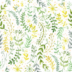 Fototapeta Pattern of flowers painted in watercolor on white paper. Sketch of flowers and herbs. Wreath, garland of flowers.