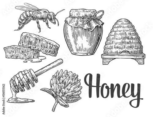 Honey Set Jars Of Bee Hive Clover Honeycomb Vector
