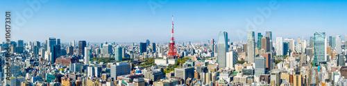 obraz lub plakat Tokyo skyline Panorama mit Tokyo tower und Roppongi