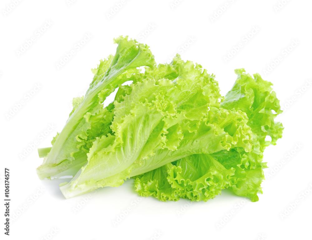 Frisches Grün Auf Einem Weißen Hintergrund Salat Foto Poster