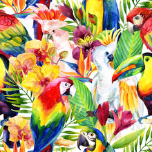 Watercolor Parrots With Tropic...