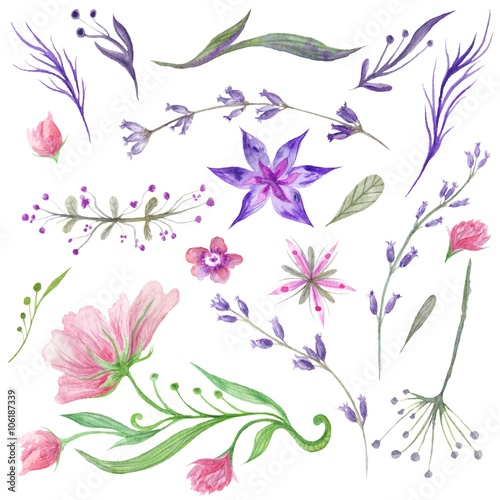 Set of Watercolor Forest Flowers and Herbs - 106187339