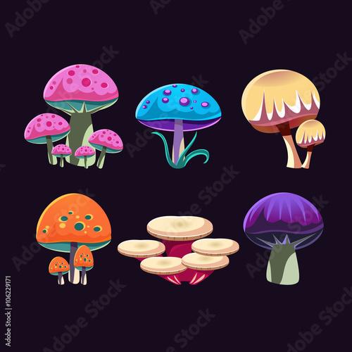 Foto auf Gartenposter Die magische Welt Fantastic Mushrooms Set
