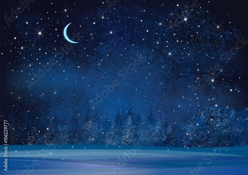 Plakát  Vector winter wonderland night background.