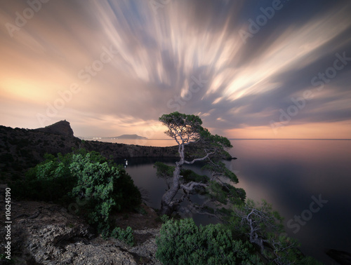 Foto op Aluminium Zalm Night landscape with beautiful tree at mountains on the background of moving clouds with moonlight.