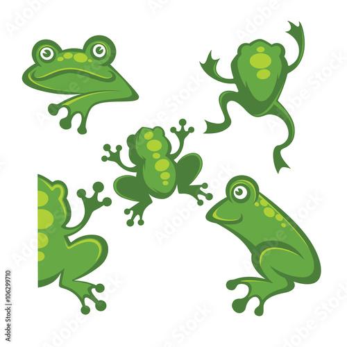 Cute Green Tree Frog Cartoon Character Icons Symbols And Emblem