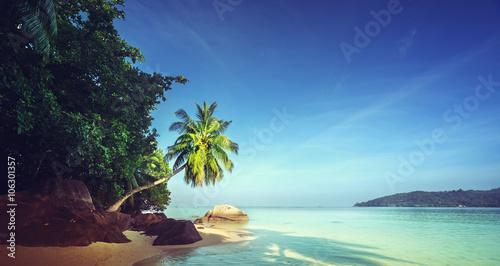 Foto auf Gartenposter Strand early morning, Seychelles beach
