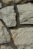 Fototapeta Kamienie - Kamień wapienny,