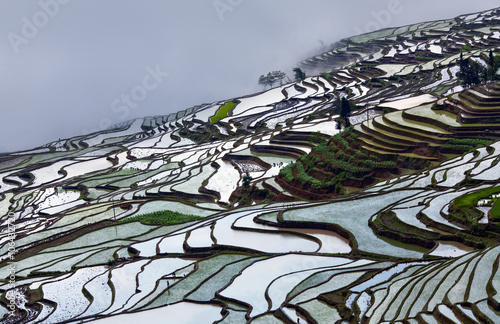 Fotobehang Rijstvelden Terraced rice fields in water season in Yunnan province, China.