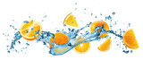 water splash with oranges on the white background
