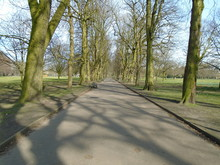 Pathway And Trees In Longford ...
