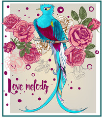 Fototapeta Egzotyczne Exotic colorful bird with rose flowers