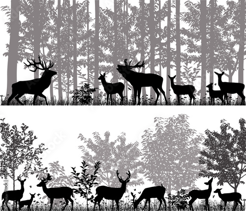 A herd of deer in silhouettes on the background of trees © Viktoria