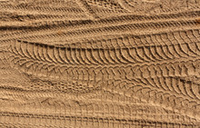 Tire Tracks On Sand.