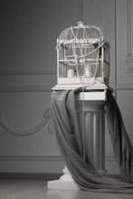 Bird Cage Stands On Ionic Colu...