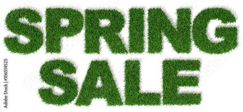 Fotografie, Obraz  Saldi e sconti di primavera, spring sale, 3d prato erba verde, sfondo bianco
