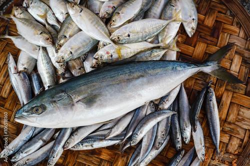 Photo  Fresh tuna fish in market. Seafood background.