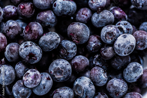 Obraz frozen blueberrys, full frame background with details - fototapety do salonu