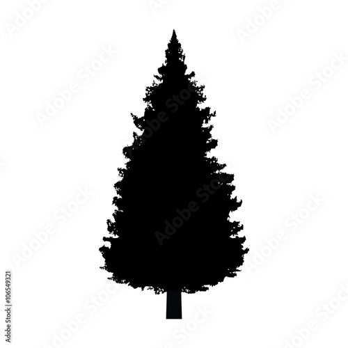 Fotografija  Evergreen conifer / pine tree flat icon for apps and websites